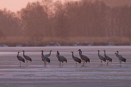 Foto © Johannes Klapwijk, johannesklapwijk.com